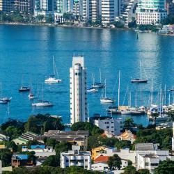 Cartagena's Port