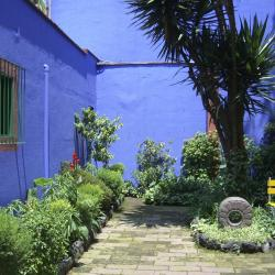 Frida Kahlo House Museum, Mexico City