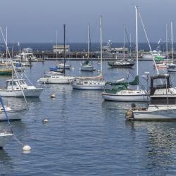 Порт Дидима