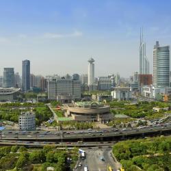 מוזיאון שנגחאי, שנגחאי