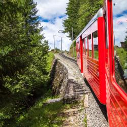 Железнодорожная станция Montenvers - Mer de Glace