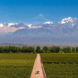 Kilang Wain Catena Zapata, Mendoza