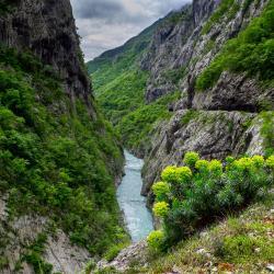 Moraca Canyon, Podgorica