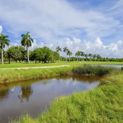 Pole golfowe Golf Son Vida