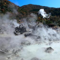 雲仙 天草 国立 公園