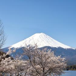 Monte Fuji, Fujikawaguchiko