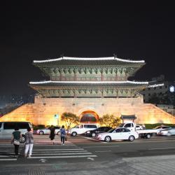 Dongdaemun Gate- Heunginjimun, Seoul