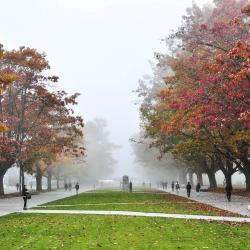 Brit Columbiai Egyetem (UBC)