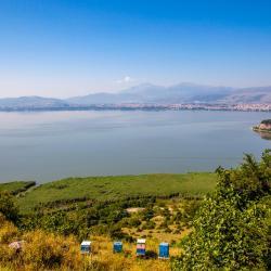 Pamvotida lake