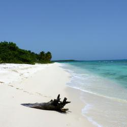 Playa Dominicus, Bayahibe