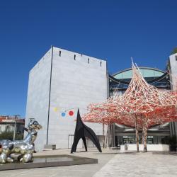 Modernin ja nykytaiteen museo (MAMAC)