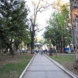Morelos Park