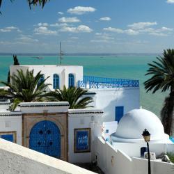 Golfe de Tunis, Sidi Bou Saïd