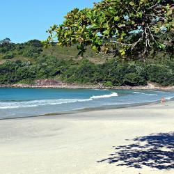 Pernambuco Beach