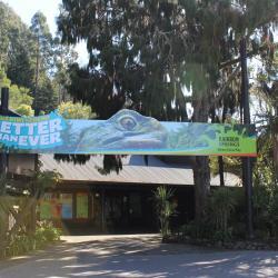 Rainbow Springs Kiwi Wildlife Park