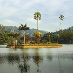 Llac de Kandy, Kandy