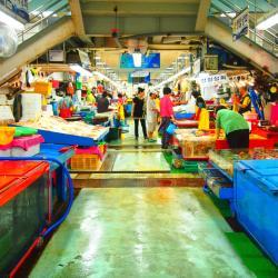 ตลาดปลาจากัลชี