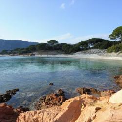 plaža Palombaggia
