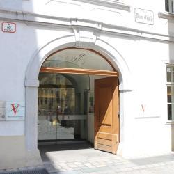 Mozartův dům ve Vídni, Vídeň