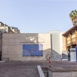 Museum of Visual Arts, Сантяго