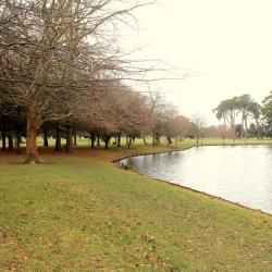 parks Hagley