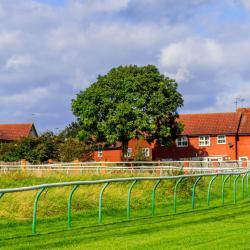 Tor wyścigów konnych w Warwick