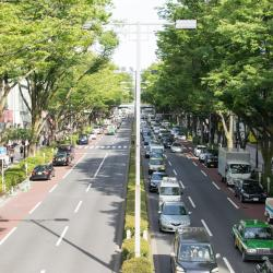 אומוטסנדו, טוקיו