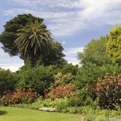 Vườn bách thảo Royal Botanic Gardens Melbourne