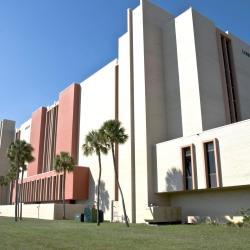 사우스 플로리다대학교