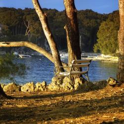 Cikat Cove