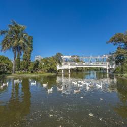 Palermo Lakes