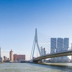 Most Erasmusbrug, Rotterdam