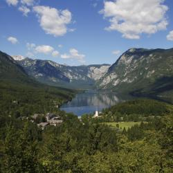 Bohinj Region 27 homestays