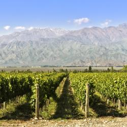 Wine Route Mendoza 3 resorts