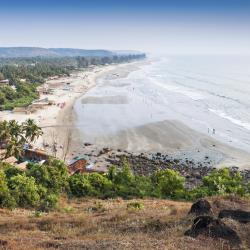 Goa 455 self catering properties