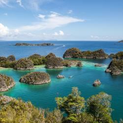 Raja Ampat 3 three-star hotels