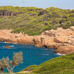 Tipaza Province 4 holiday rentals