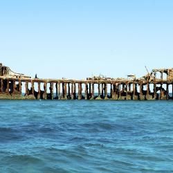 Bimini Islands 5 vacation rentals