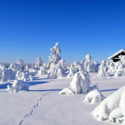 Saariselka Ski 48 villor