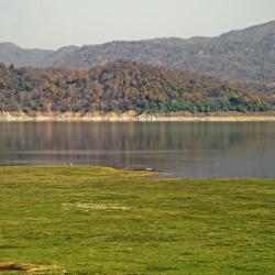 Jim Corbett National Park 55 resorts