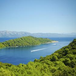 Mljet Island 208 rooms