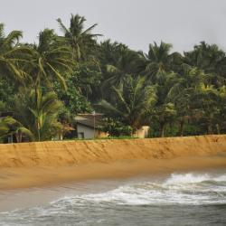 Kalutara District 139 homestays