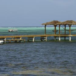 Little Cayman  4 villas