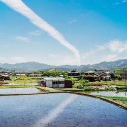 Oita 4 lodges