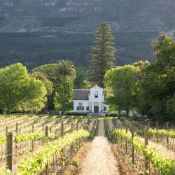 Distrikt Cape Winelands
