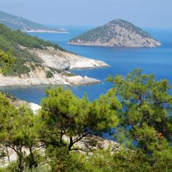 Thasos 287 pet-friendly hotels