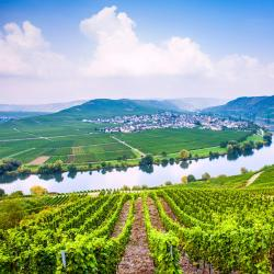 German Mosel 115 four-star hotels