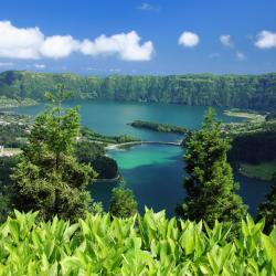 Azores 709 vacation homes