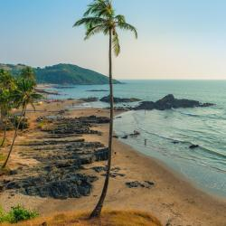 North Goa 255 resorts