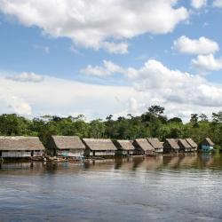 Amazonas 23 homestays